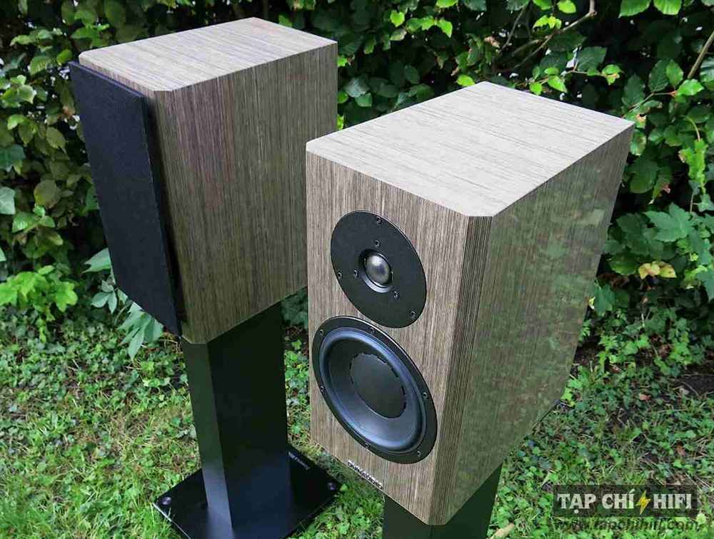 Loa Dynaudio Special Forty dep