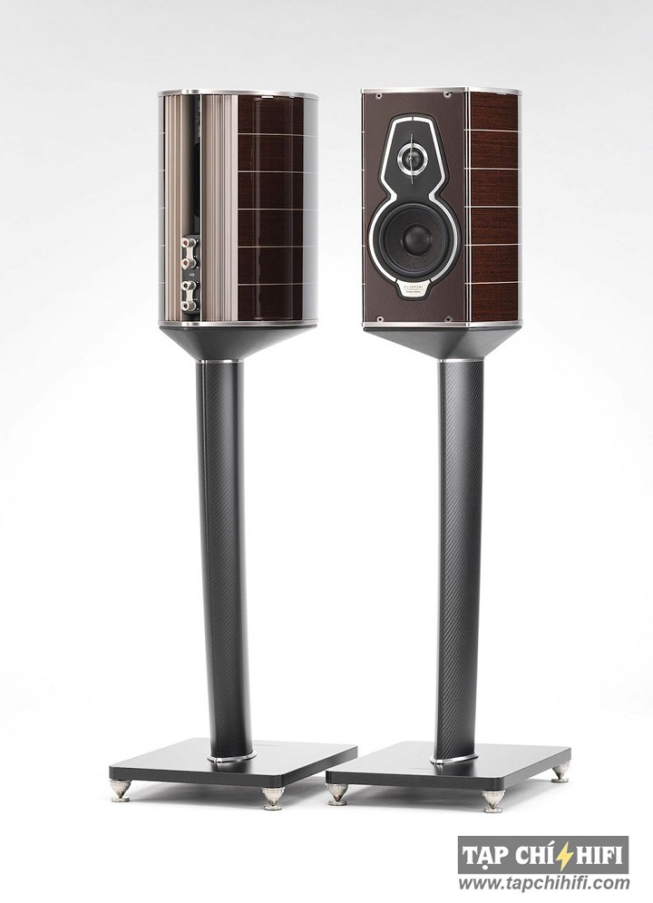 Loa sonus faber Guarneri Homage Tradition tot