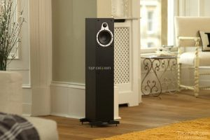 loa Tannoy Eclipse Two chuan