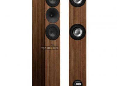 Amphion-Argon-7LS walnut