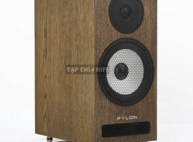 loa pylon audio ruby monitor