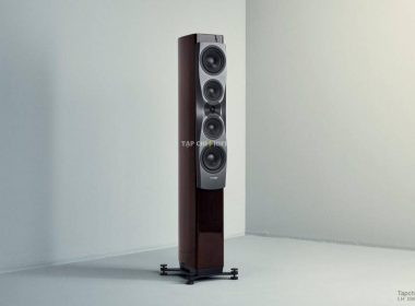 loa dynaudio confidence 50 chat